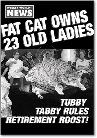 Fat Cat Unique Adult Humor Birthday Greeting Card Nobleworks
