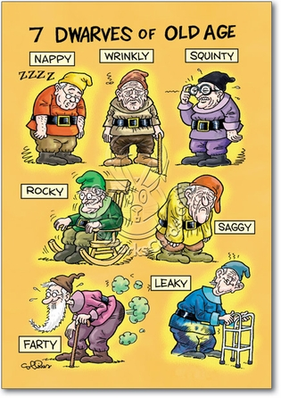 You Know You Are Old When You Can Relate To The Seven Dwarfs Of Old Age:  Nappy, Wrinkly, Squinty, Rocky, Saggy, Leaky, And Farty!